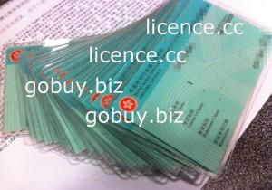 香港驾照|hongkongdrivinglicence|hongkongdrivinglicense|-licence.cc